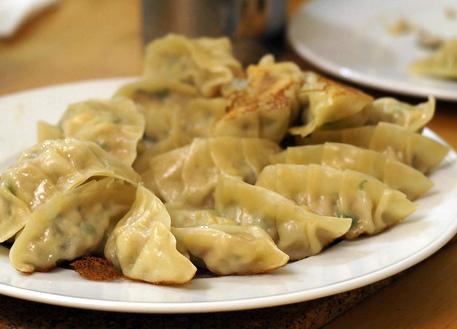 korean dumpling making mandu korean kimchi dumplings mandu mandu are ...