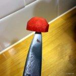Mushroom3-001